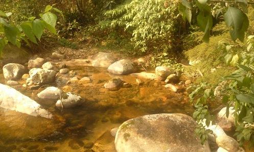 do rio o quintal... 22-08-2010 - clique para ampliar - foto arquivo pessoal